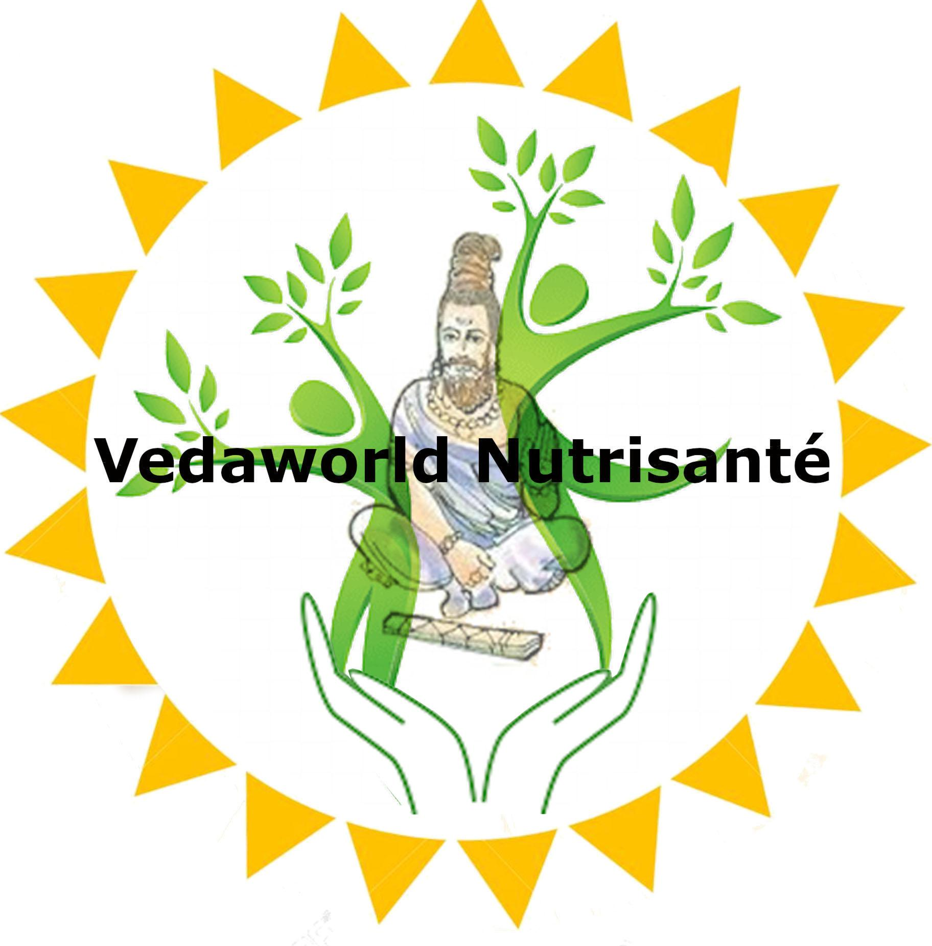 Vedaworld International